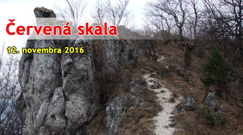 Červená skala, jaskyňa Dupna